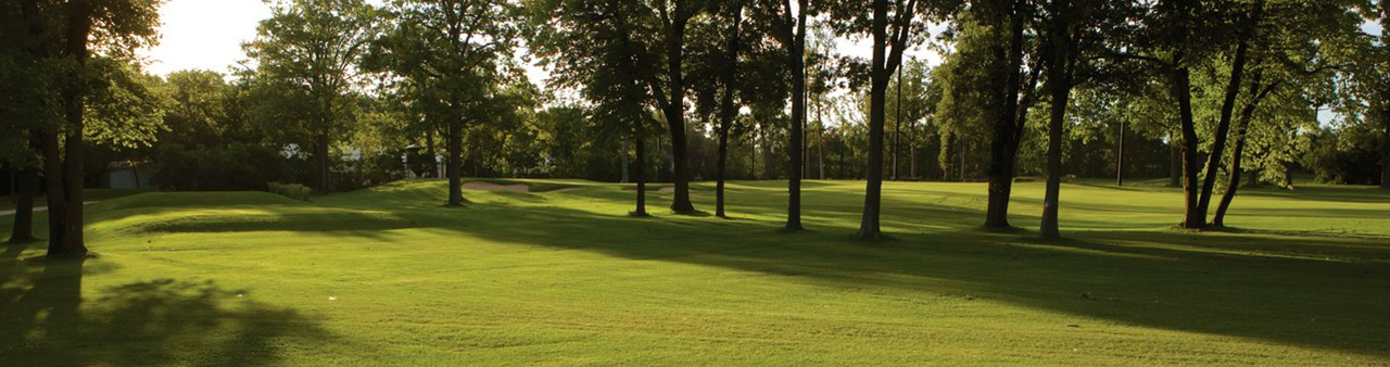Gestire le zone d'ombra del tappeto erboso – Parte 2